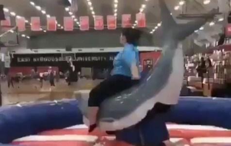 Vaya, siempre pensé que los tiburones ganan a las ballenas...