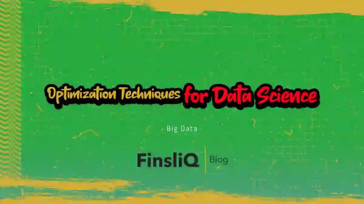Optimization Techniques for Data Scientist