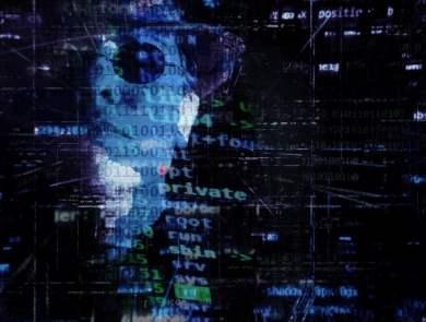pessoa de óculos escuro e chapéu com códigos na tela Ransomware