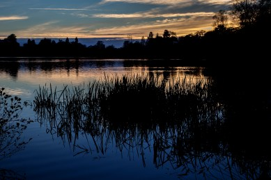 Late light on the Mere
