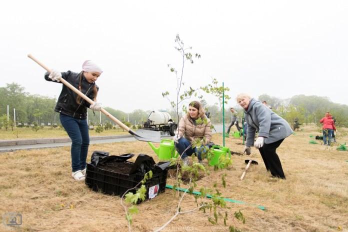 Pessoas de todas as idades se reúnem para plantar árvores no Campus da FEFU