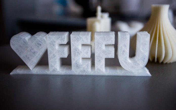 3D FEFU 2019