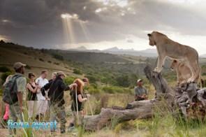 Zorgfontein 17 March 2012-193742