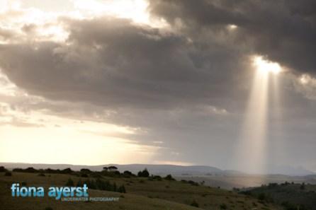 Zorgfontein 17 March 2012-233775