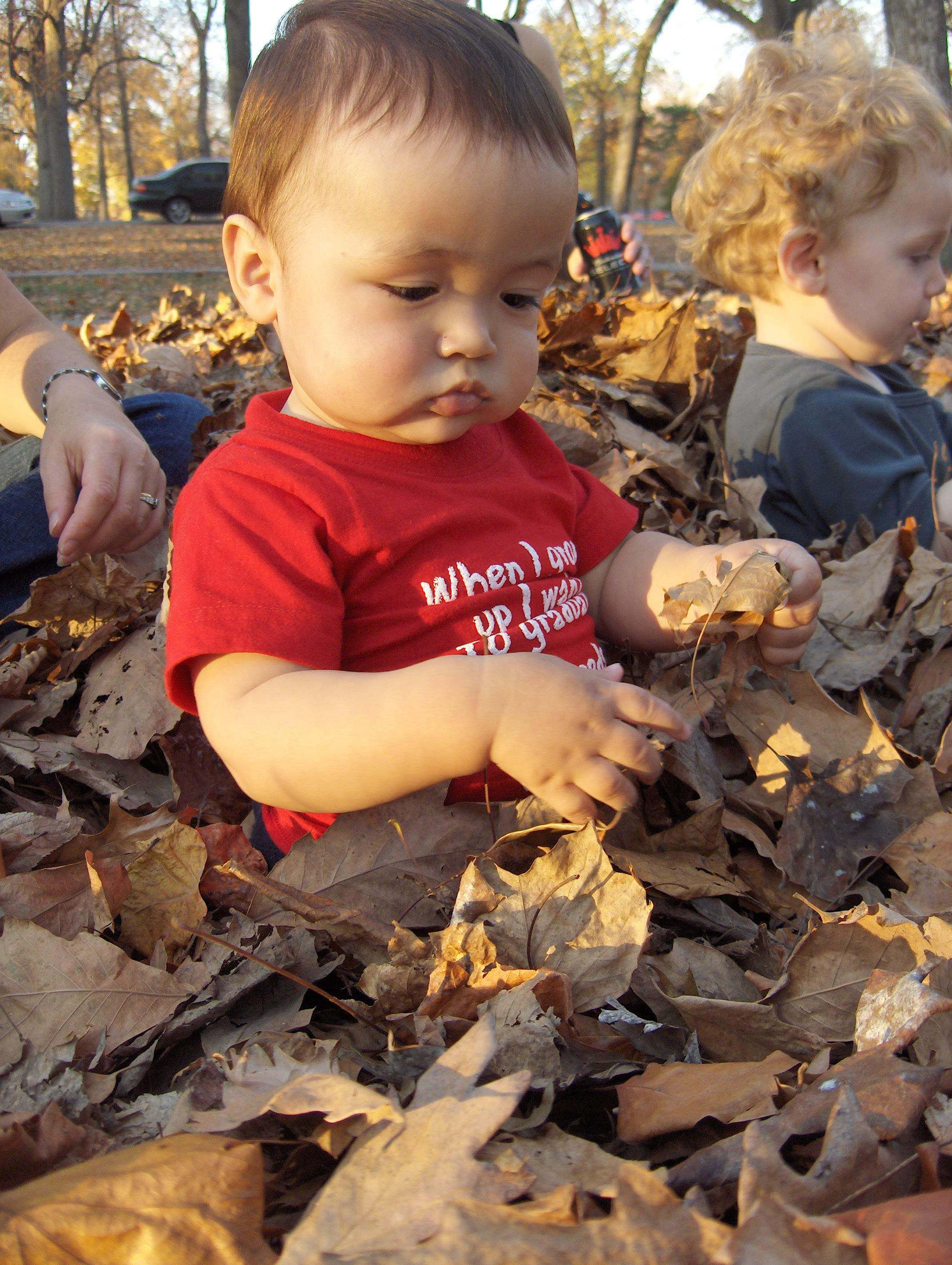 K & L in the leaves