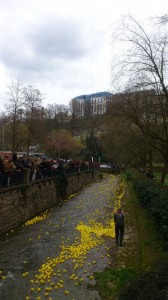 Luxembourg Duck Race