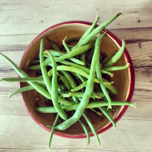 Green Beans from our balcony