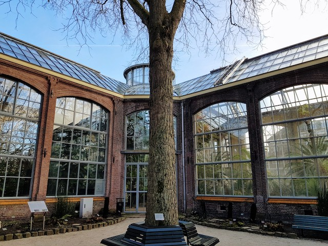 De Hortus, Amsterdam. Amsterdam Botanic garden. Glasshouses at De Hortus.