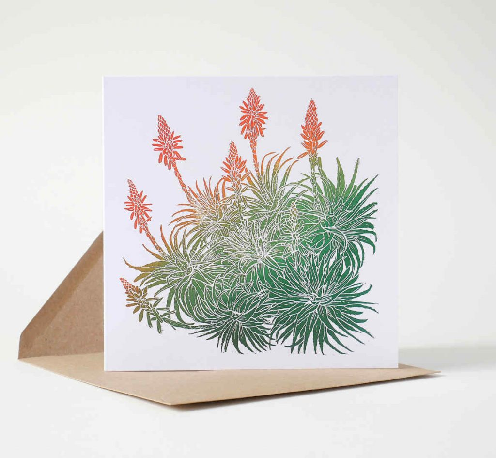Unique Art Greeting Card by Fiona Parrott featuring a Flowering Aloe succulent