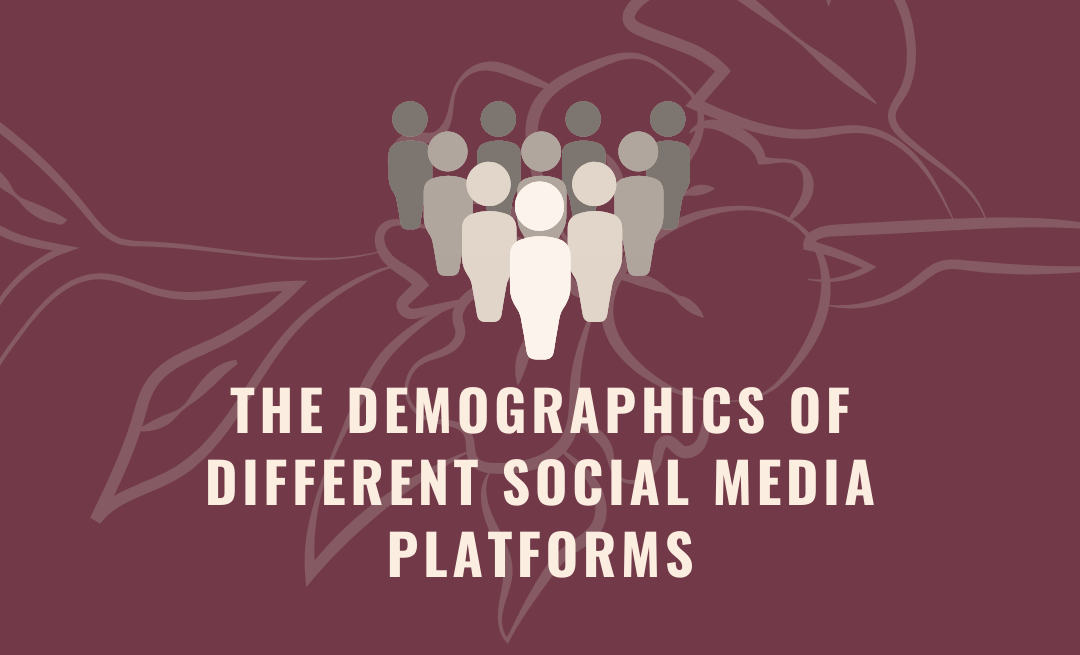 The Demographics of Social Media Platforms