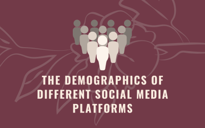 The Demographics of Social Media Platforms