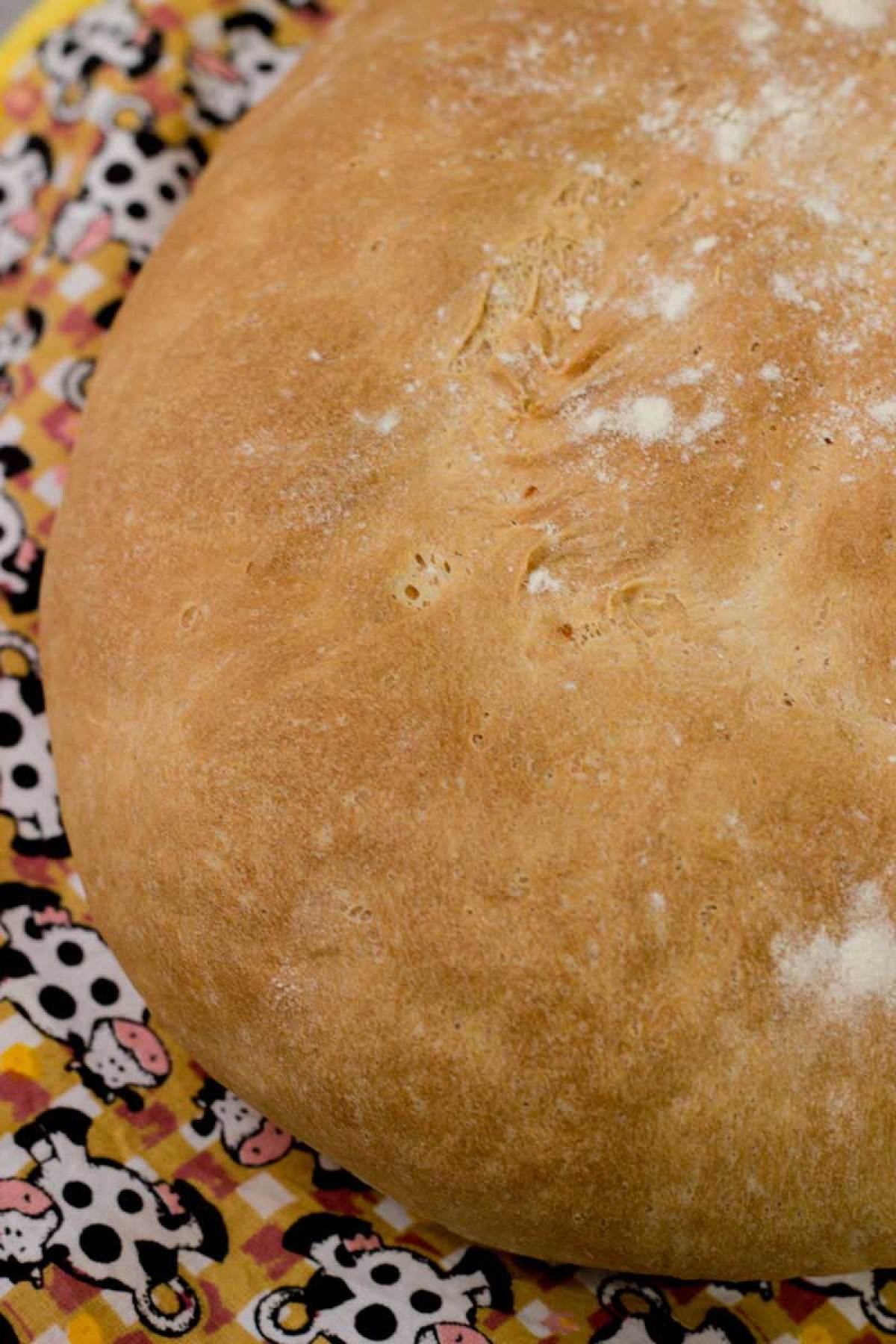pão italiano rústico