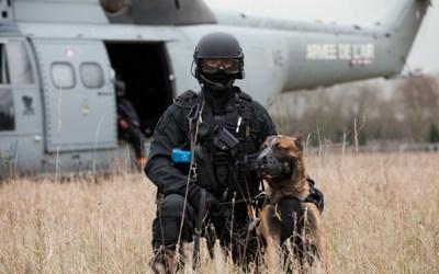 GIGN, RAID, BRI : un plan pour coordonner les forces d'élites