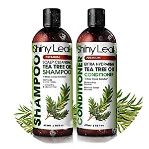 Tea Tree Oil Shampoo and Conditioner