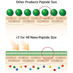 peptide r3 for all anti-aging wrinkle remover moisturizer cosmetic skincare beauty immune system