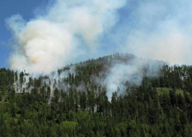 The Hungry Hill Fire. InciWeb photo, May 8, 2015.