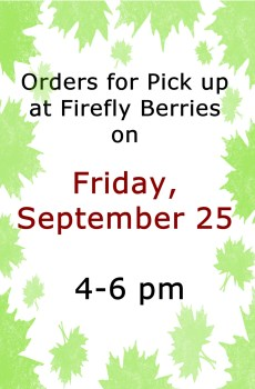 9/25 Friday Pick Up