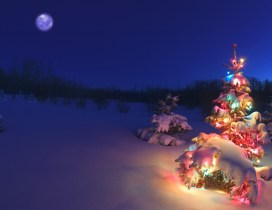 christmas in the snow