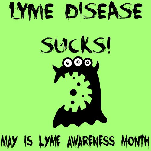 Important information about Lyme disease