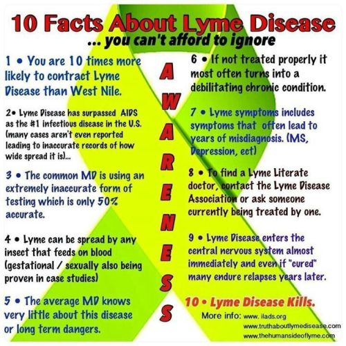 Lyme Disease symptoms and awareness