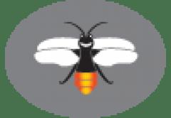 Firefly logo no text sm