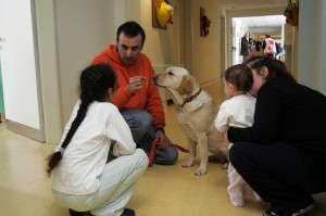pet therapy in corsia