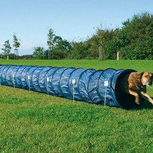 Agility tunnel basic