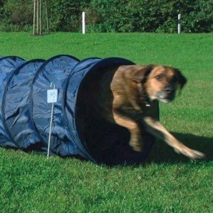 Agility tunnel stor, 5 meter x 60 cm