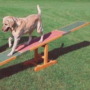 Agilitybane til små hunde med vippe, spring, slalom, ring, tunnel