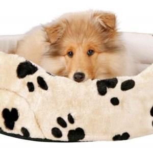 Hundeseng model Charlie, beige med poter