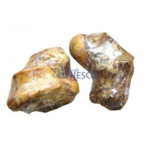 Whesco Hunde Snack Kødben Naturlig Okseknogle - Med Kød - - - - -