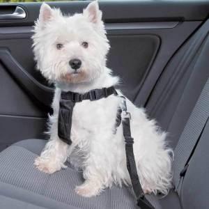 Hunde-sikkerhedssele til bil