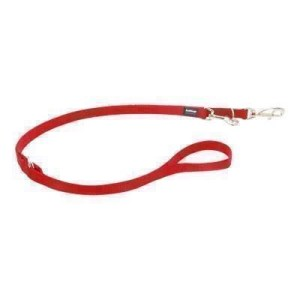 Red Dingo dressurline, Rød