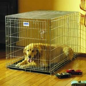 Stærkt Savic Hundebur i stål til store hunde 118 cm.