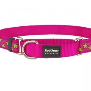 Red Dingo Halvkvæl halsbånd, Pink/Lime stjerner, 24 - 36 cm / 15 mm