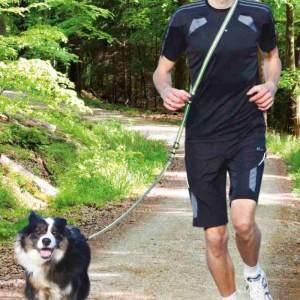 Trinløs justerbar joggingline til hunde