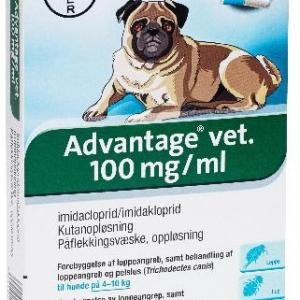 Advantage Hund 4-10kg