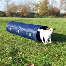 Agility-tunnel Nylon til hvalpe og små hunde