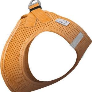 Curli Vest sele Air-mesh Orange, vælg størrelse 2XS Brystmål 28-32cm