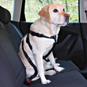 Trixie sikkerhedssele hund Medium