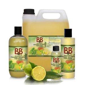 B&B Økologisk Shampoo - Citrus