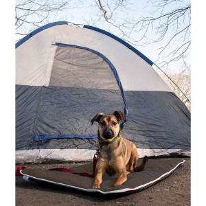 Dog Gone Smart rejsemadras, Pebble Grey, Large
