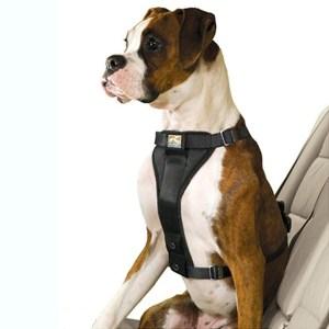 Kurgo Tru-Fit Smart sikkerhedssele-XS