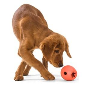 Rumbl, tyggestærkt aktivitets legetøj-S