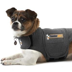 Thundershirt den bedste løsning mod angst hos hunde-M