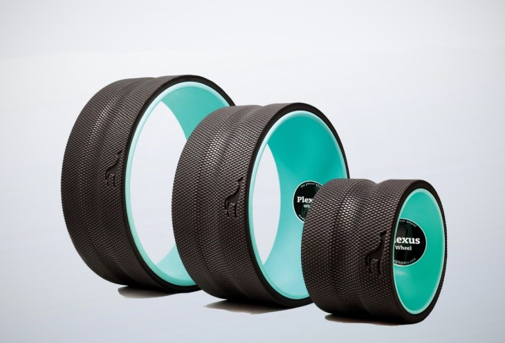 Plexus Wheel.jpg