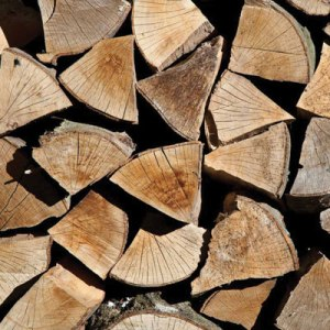premium-kiln-dried-logs