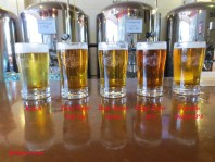 The beers available during my visit at Sutter Buttes Brewing.