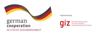giz - Firmus Advisory