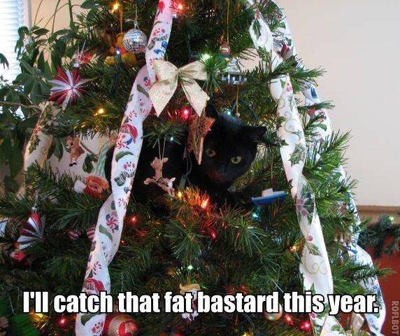 Santa.lolcat